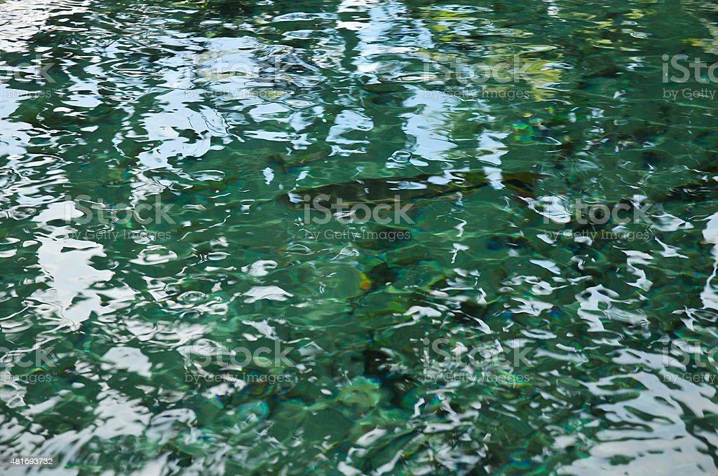 Cristalinas do rio - foto de acervo