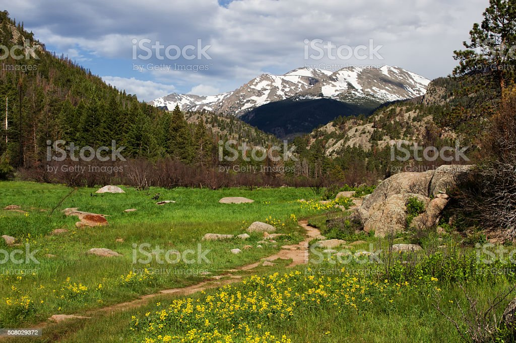 Cub Lake Trail in Rocky Mountain National Park stock photo