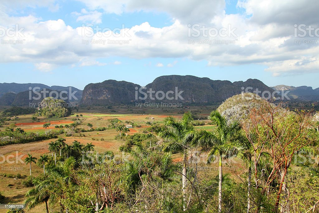 Cuba - Vinales stock photo