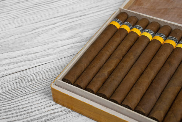 Cuban cigars in the cigar box on a wooden background – Foto