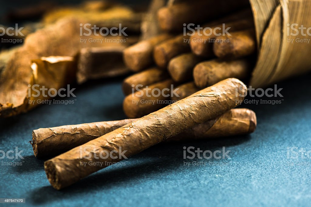Cuban cigars in traditional palm leafs box stock photo