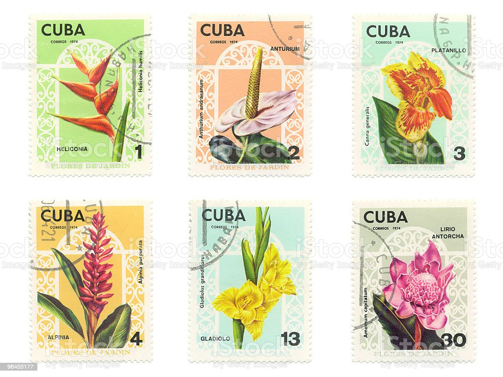 Cuban Stamps With Diffrent Flowers royalty-free stock photo