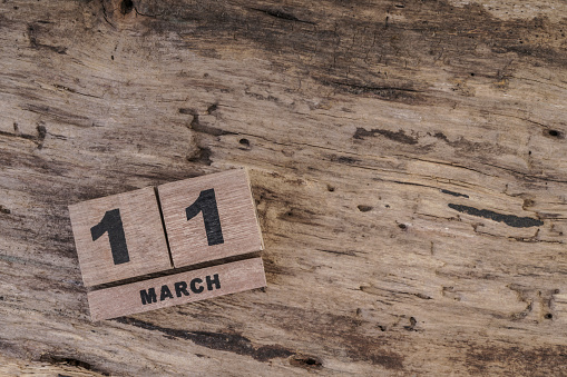 488008496 istock photo cube calendar for march on wooden surface 502839308
