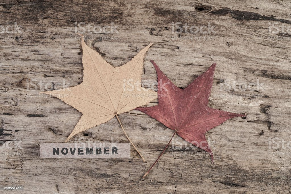 cube calendar for november on wooden background with copy space