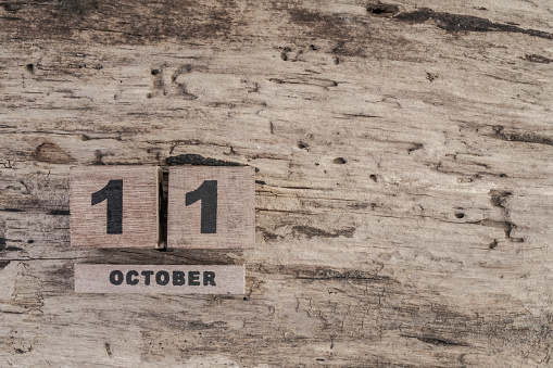 488008496 istock photo cube calendar for october on wooden background with copy space 542294596