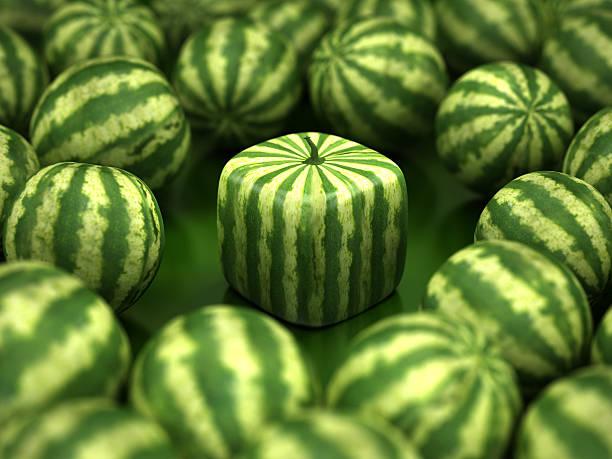 Cube watermelon stock photo