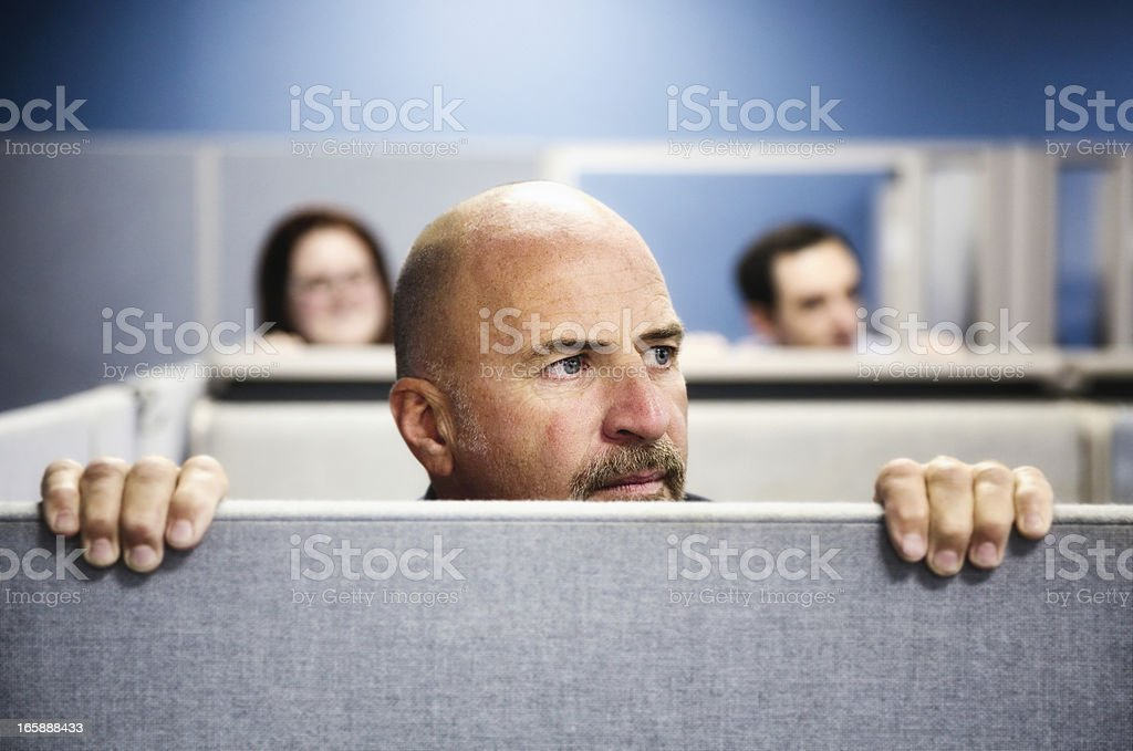 Cubicle Curiosity stock photo