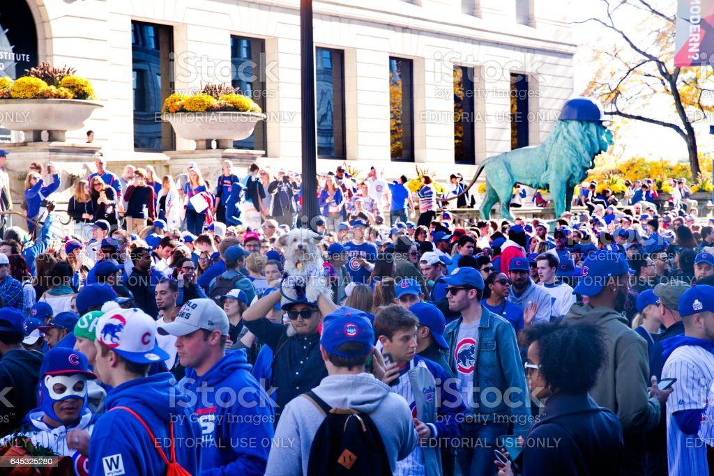 Cubs Win Chicago Celebration stock photo