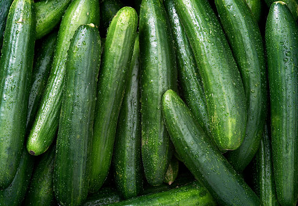 cucumber background - cucumber stock photos and pictures
