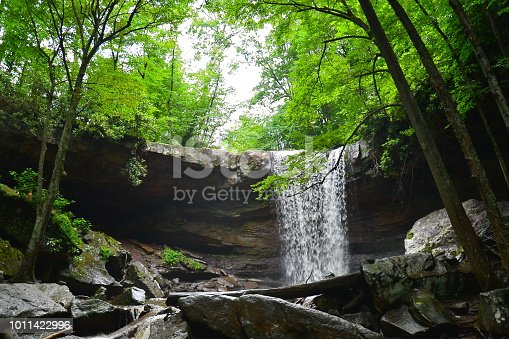 After days of rain, the waterfall flows vigorously in Ohiopyle State Park, Pennsylvania.