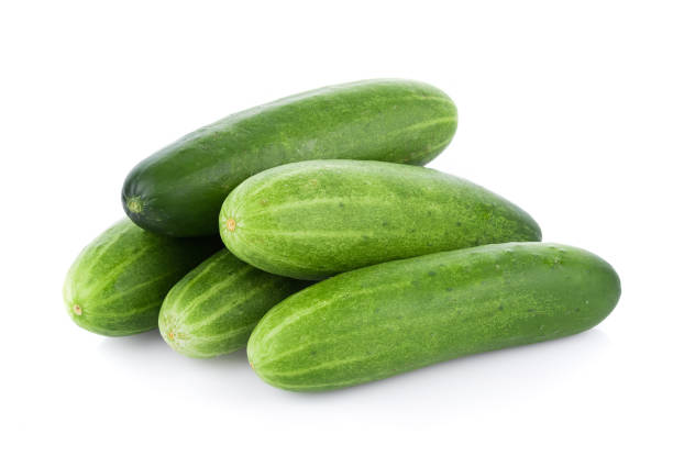 cucumber isolated on the white background - cucumber stock photos and pictures