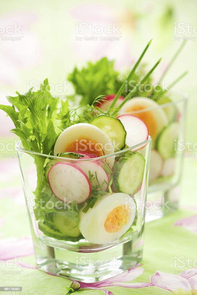 cucumber,radish and egg salad royalty-free stock photo