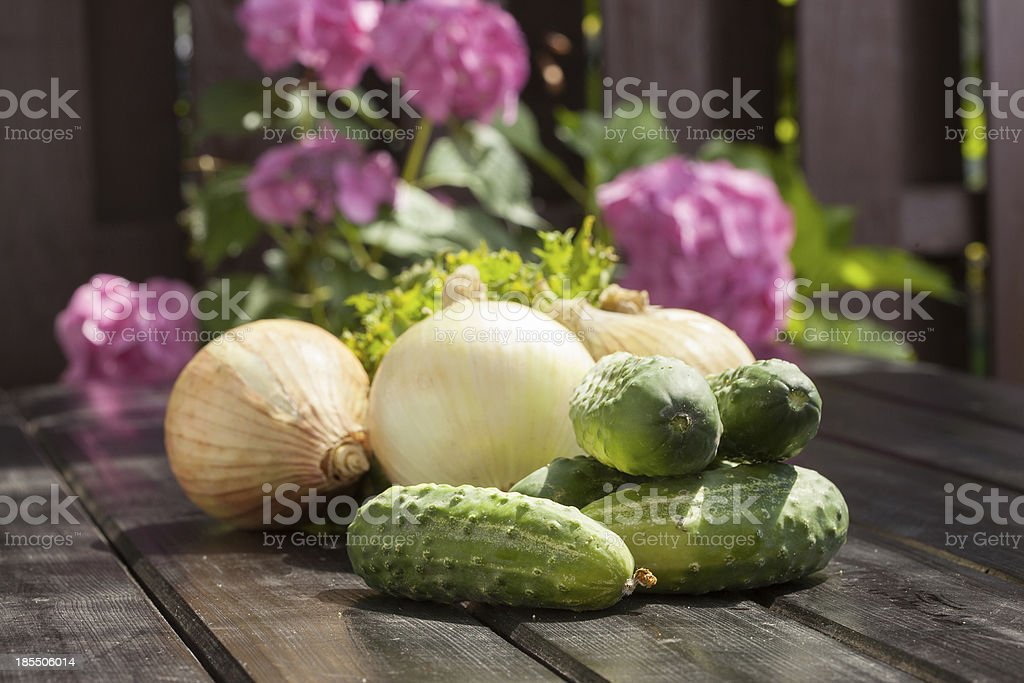 Cucumbers and onion royalty-free stock photo