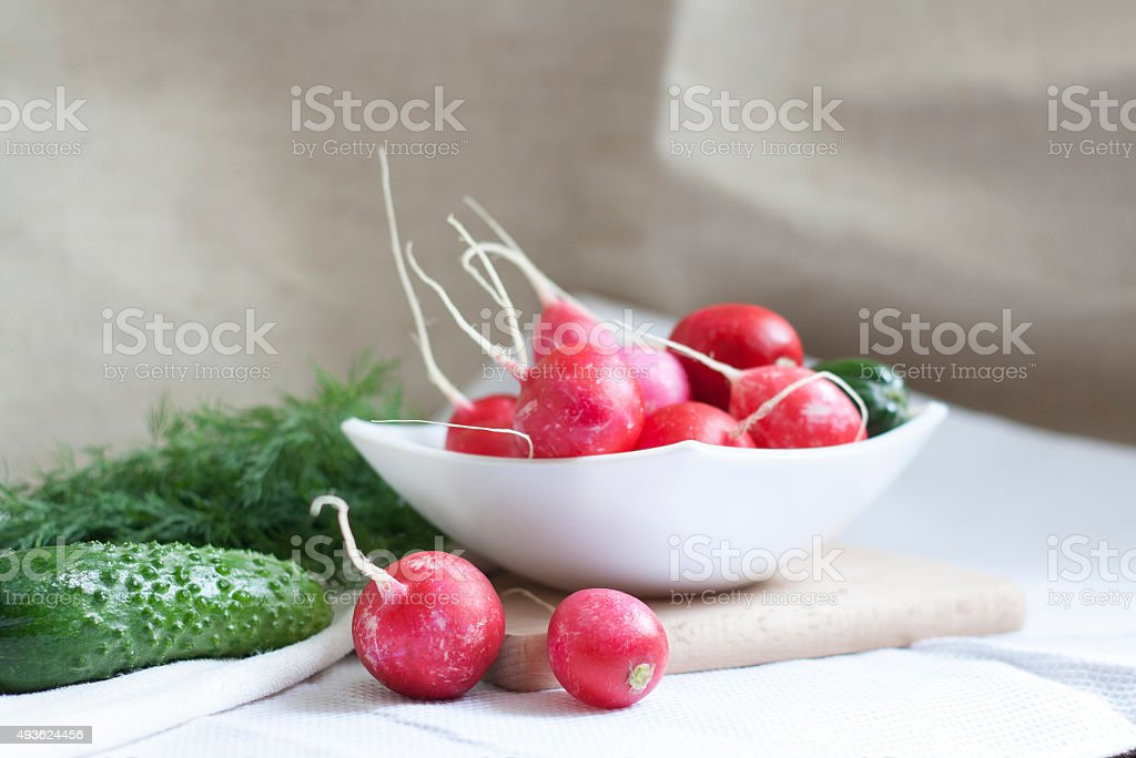 Cucumbers, radishes and herbs royalty-free stock photo
