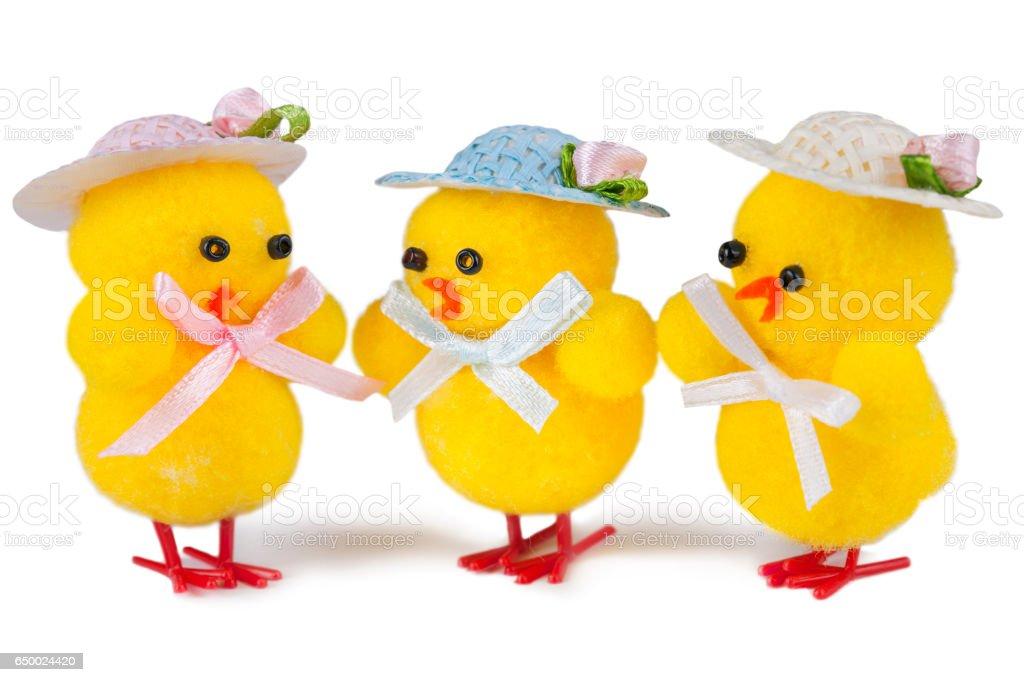 Cuddling Baby Chicken - Chick Humor Fun Easter stock photo