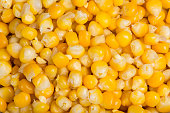 Close-up of a beautiful yellow heap of sweet corn seeds in a decorative textured pattern. Tasty organic vegetable. Healthy vegetarian and vegan food, saccharide, nutrition