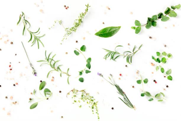 kulinarne zioła i przyprawy, strzał z góry na białym tle, wzór gotowania - liść mięty przyprawa zdjęcia i obrazy z banku zdjęć