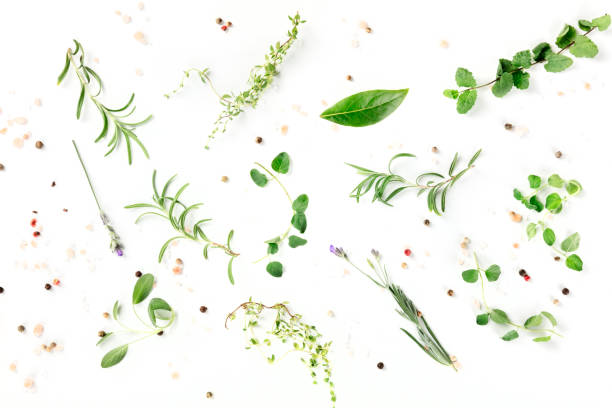 Culinary herbs and spices, shot from the top on a white background, cooking pattern Culinary herbs and spices, shot from the top on a white background, cooking pattern thyme photos stock pictures, royalty-free photos & images