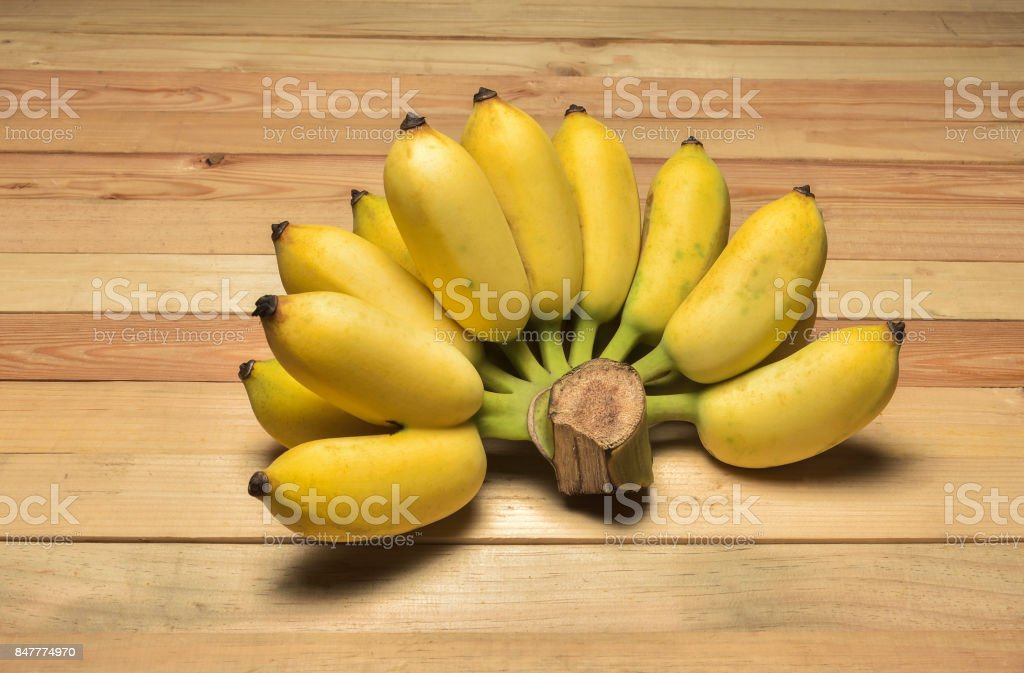 Cultivated banana on the woods bacground stock photo