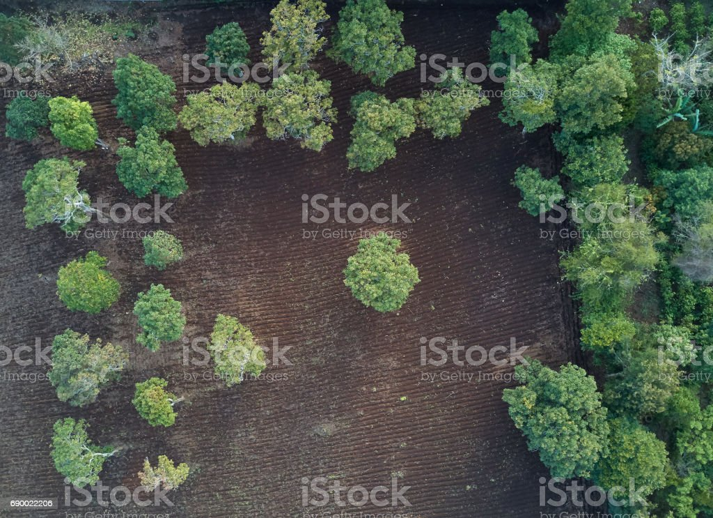 Cultivated field in farm stock photo