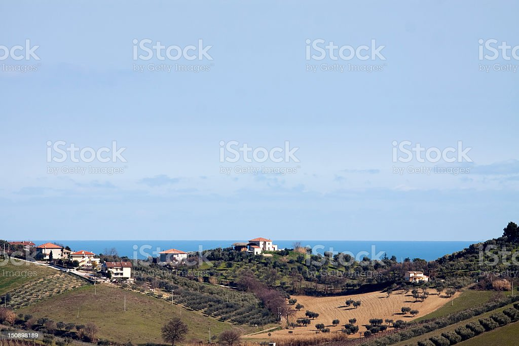 Cultivated hills near the sea royalty-free stock photo