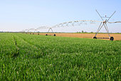 Cultivated land with irrigation equipment. Location: Tuscany, Italy.