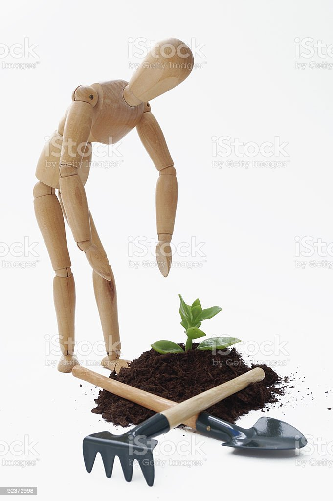 Cultivation concept royalty-free stock photo
