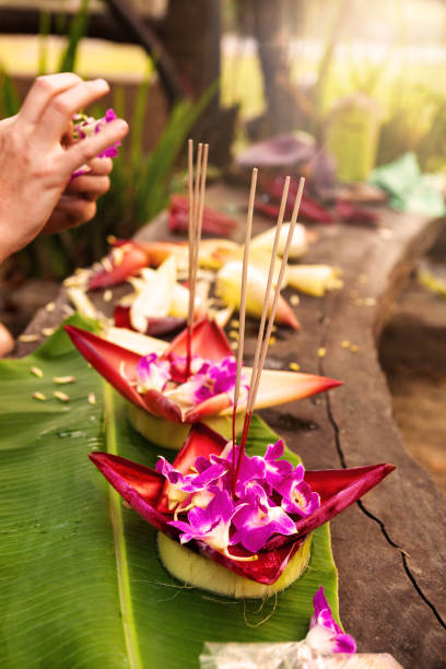 cultural festival in asia, loi krathong. good luck symbol. - kratong stock photos and pictures