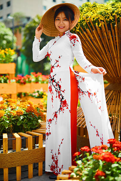 culture asia. asian woman in traditional dress ( clothes ) - ao dai stock photos and pictures