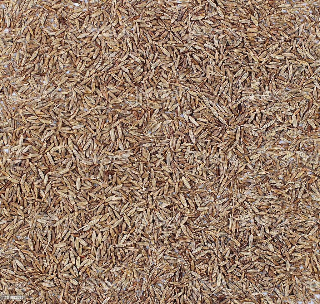 Cumin seeds background royalty-free stock photo