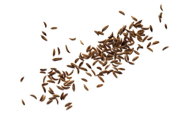 Cumin seeds or caraway stock photo