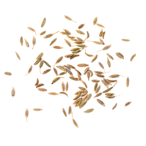 cumin seeds – zdjęcie