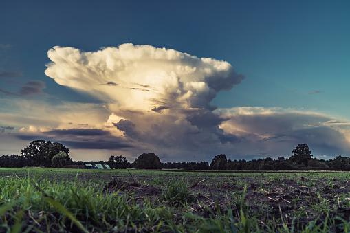 Cumulus Cloud over field