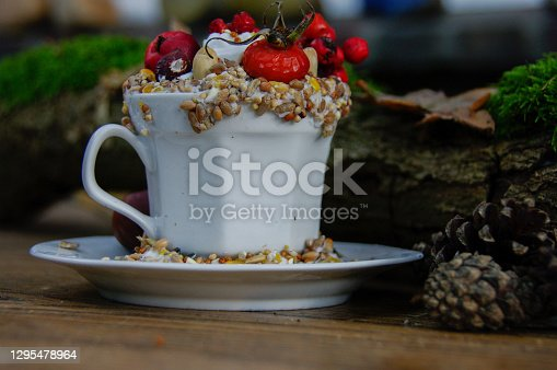 Cup and saucer in with seed food for birds