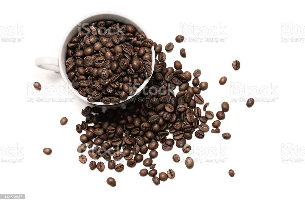 Кубок полный зерен кофе стоковое фото