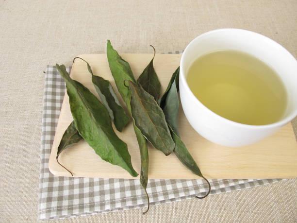 A Cup of avocado leaf tea, tea with dried avocado leaves stock photo