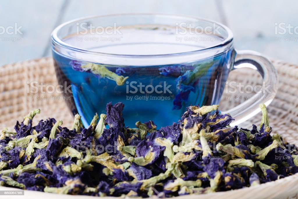 Cup of Butterfly pea tea (pea flowers, blue pea) for healthy drinking stock photo