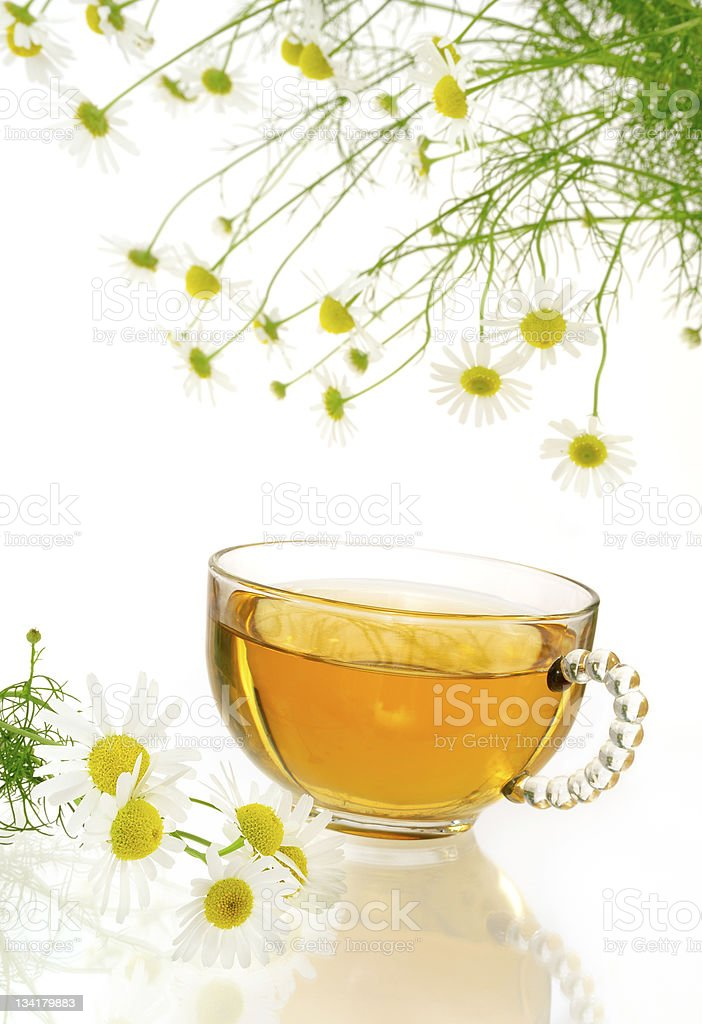 Cup of chamomile tea with fresh chamomilla flowers over white royalty-free stock photo
