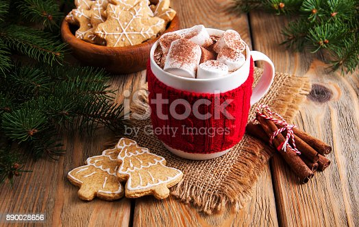 istock Cup of Christmas cocoa 890028656