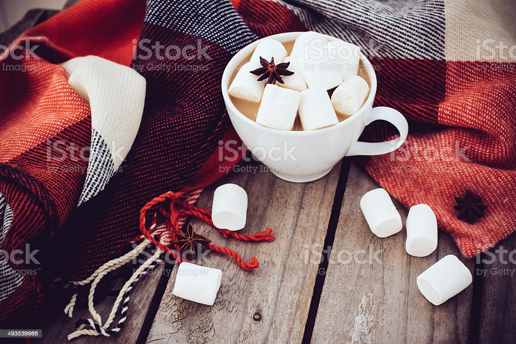 cup of cocoa and warm plaid stock photo