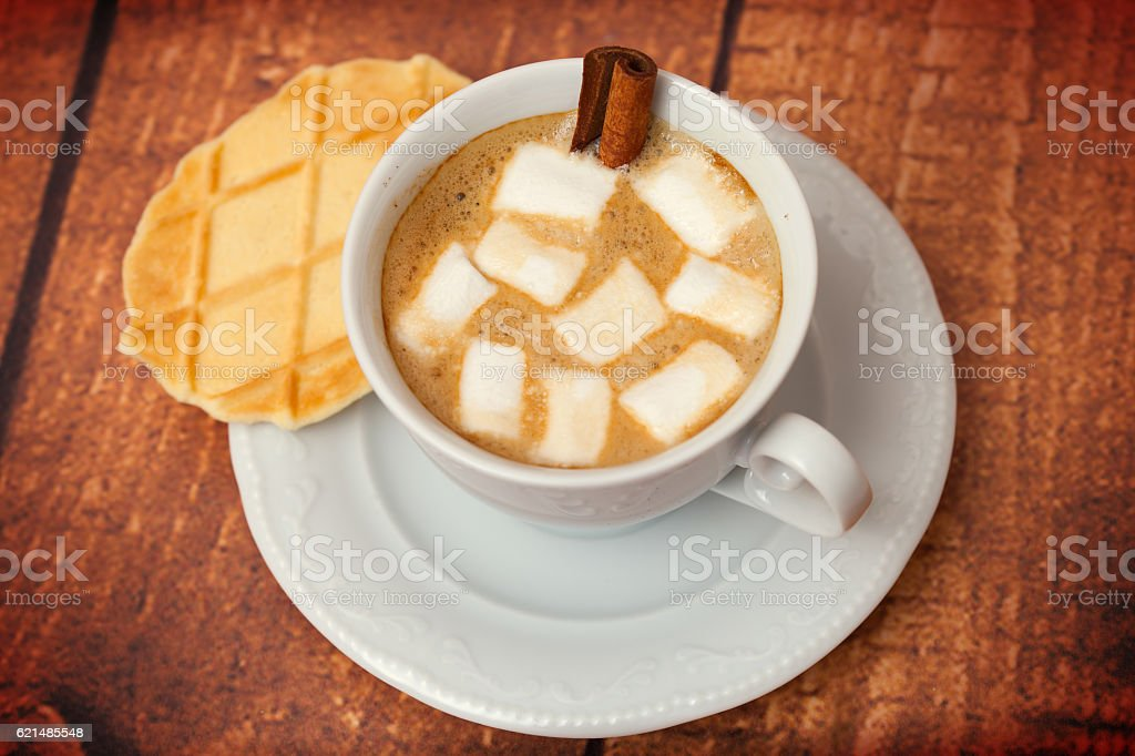 Cup of cocoa with biscuits Lizenzfreies stock-foto
