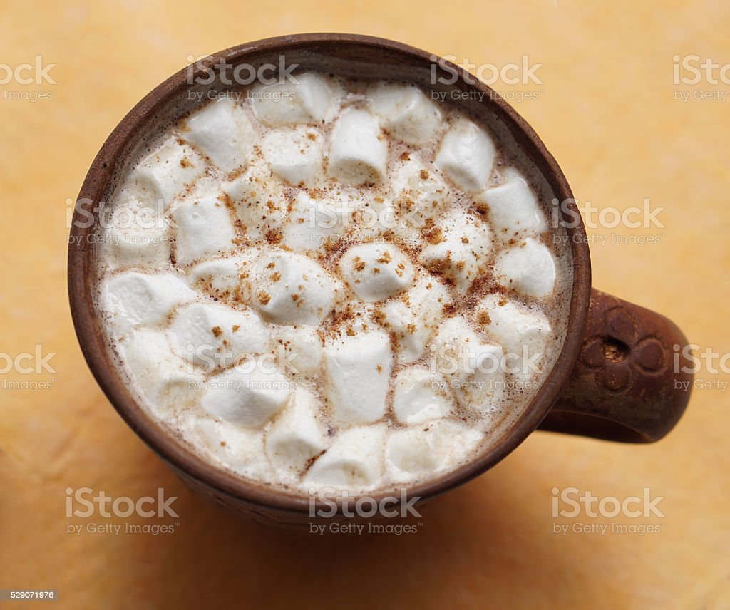 Cup of cocoa with marshmallow stock photo
