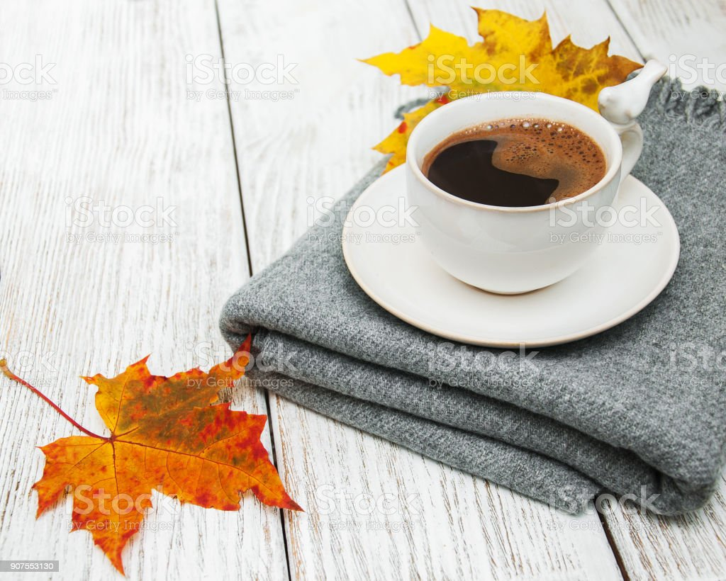 Cup of coffee and autumn leaves stock photo