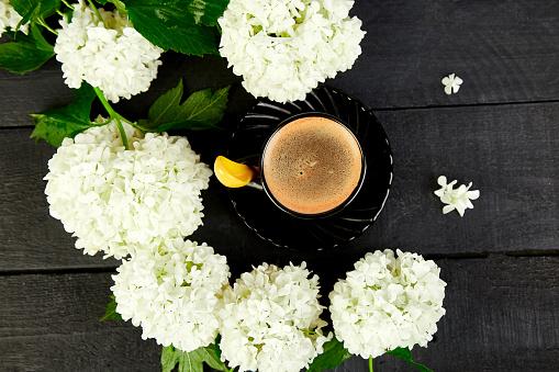 수 국 부케와 커피 한잔 0명에 대한 스톡 사진 및 기타 이미지