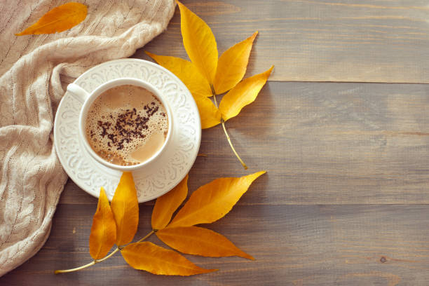 Cup of coffee with milk in sunny autumn day. stock photo