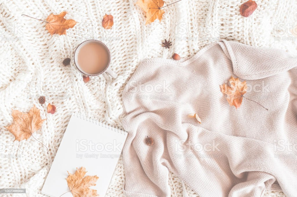 Cup of coffee, women fashion sweater, autumn leaves, plaid, notebook stock photo