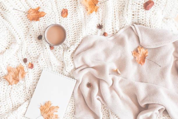 cup of coffee, women fashion sweater, autumn leaves, plaid, notebook - folha de caderno imagens e fotografias de stock