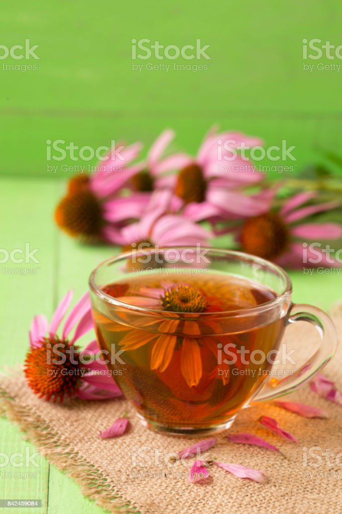 Cup of echinacea tea on green wooden table stock photo
