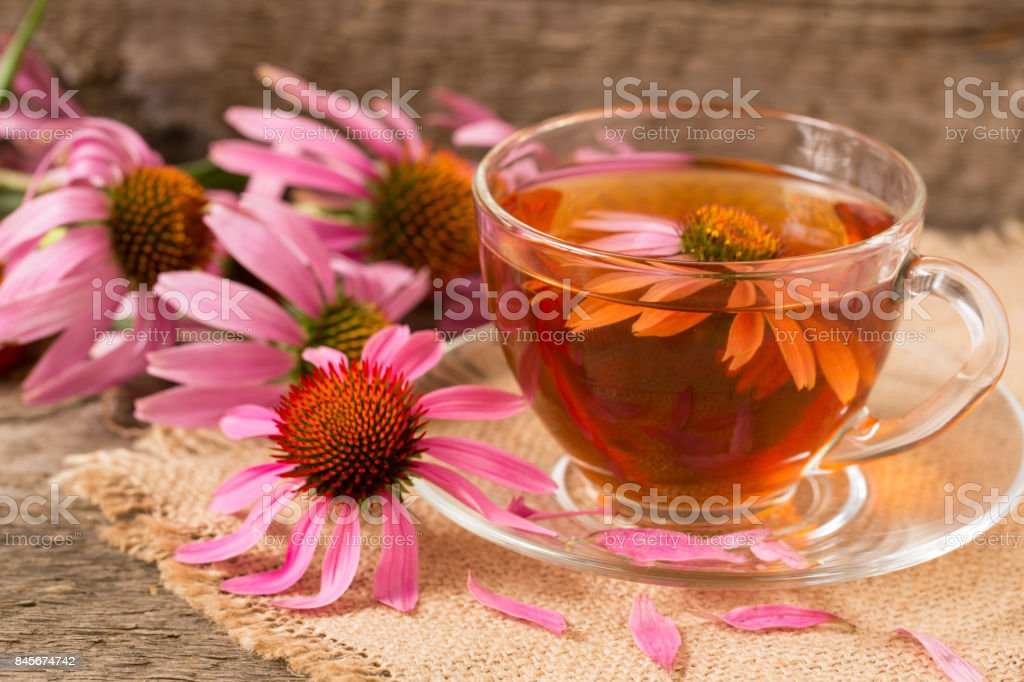 Cup of echinacea tea on old wooden table stock photo