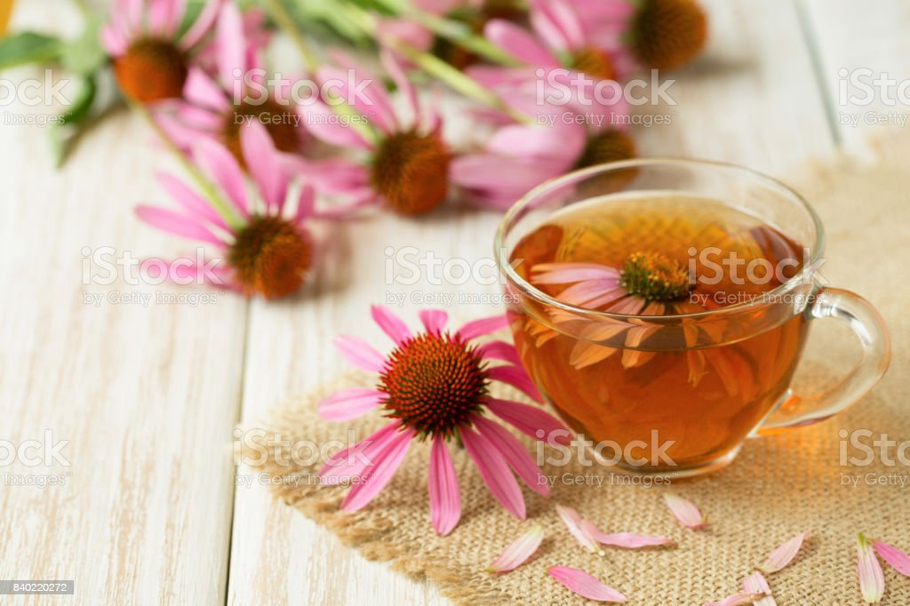 Cup of echinacea tea on white wooden table stock photo